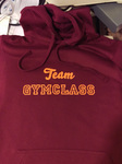 Team Gymclass